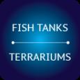 Glass Fish Tank & Terrarium Designs