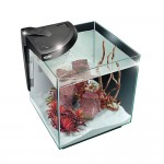 NEWA MORE All in One Freshwater Aquarium - made in Italy