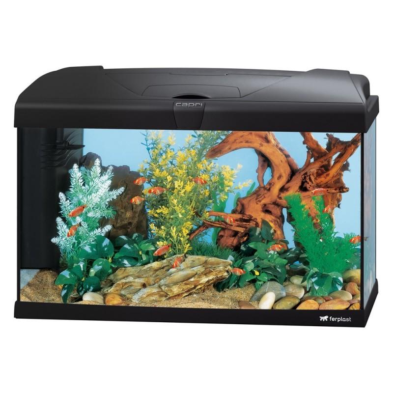 Ferplast Capri 60 Uk Aquarium T8 Lighting